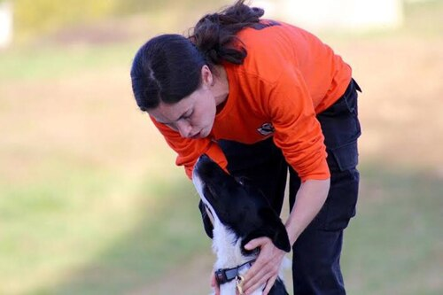 Female dog parent in orange shirt leans down to praise her black and white rescue dog.